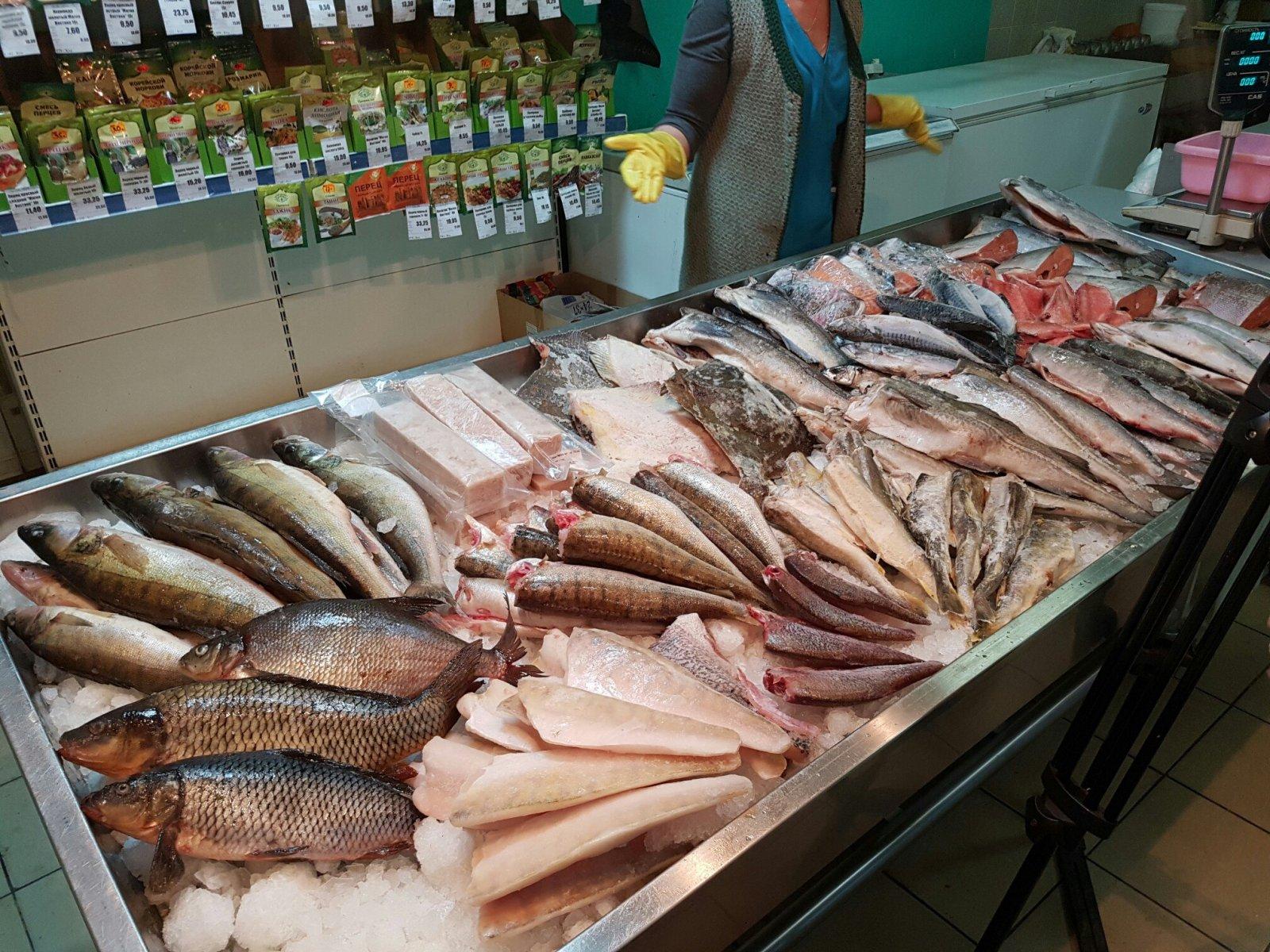 Какая Рыба Есть В Магазинах