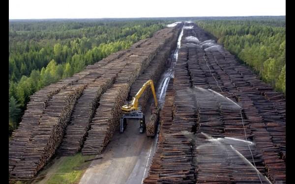 Эту фотографию часто можно встретить в соцсетях в качестве иллюстрации кстрашилкам, что якобы китайцы спилили весь лес в Сибири. На самом деле это крупнейшее хранилище древесины в Швеции, куда свозили поваленные ураганом «Гудрун» деревья в 2005 году