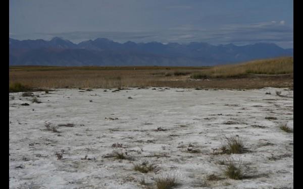 Глауберова соль Алгинского озера