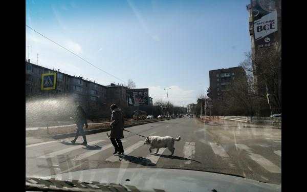 Наконец-то, первые люди... И, конечно, с собакой)))