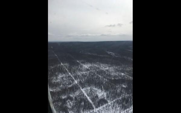 Первое знакомство с участком происходит в воздухе. С высоты можно увидеть, как лес пронизывают просеки-профили.