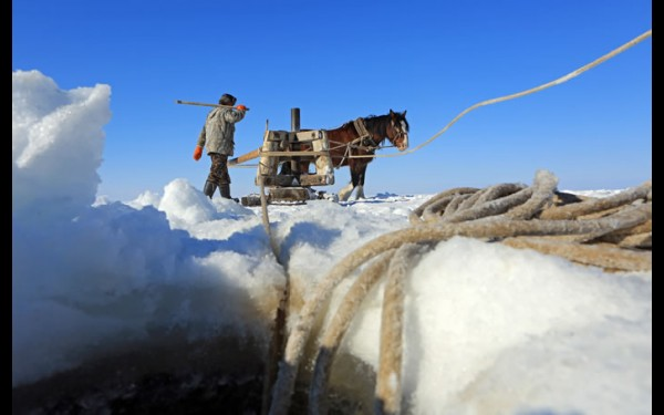 Воротовщик —  человек, погоняющий лошадь вокруг  ворота, начальная  ступень в рыбацкой  иерахии