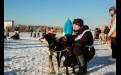 В месяц каждый владелец собаки бегает со своим питомцем в среднем по 150—200 километров.