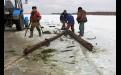 В  конце дня  брёвна трактором  утащат на берег