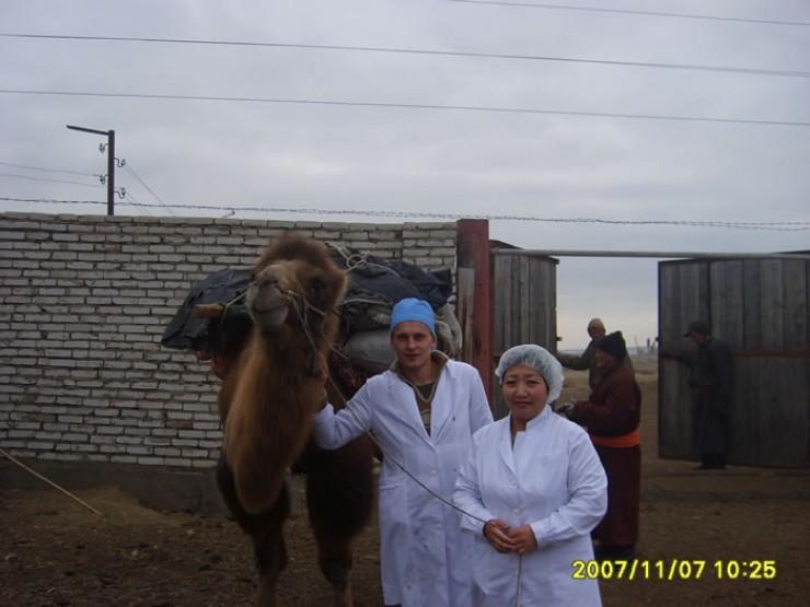 Большой опыт работы Николай Лазарев приобрел и во время  непродолжительной работы в Монголии. Он с коллегами контролировал качество мяса, ввозимого на территорию Иркутской области.