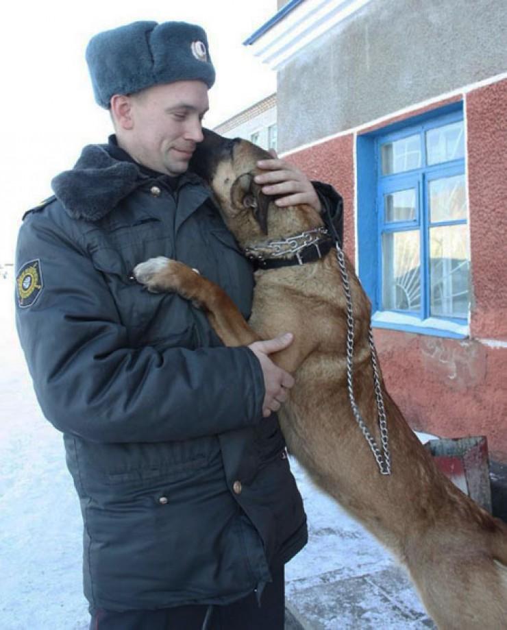 Собака — лучший друг полицейского. Особенно на селе. Считается, что в деревнях запахов гораздо меньше, чем в городе, и овчарка легко может помочь в раскрытии преступления.