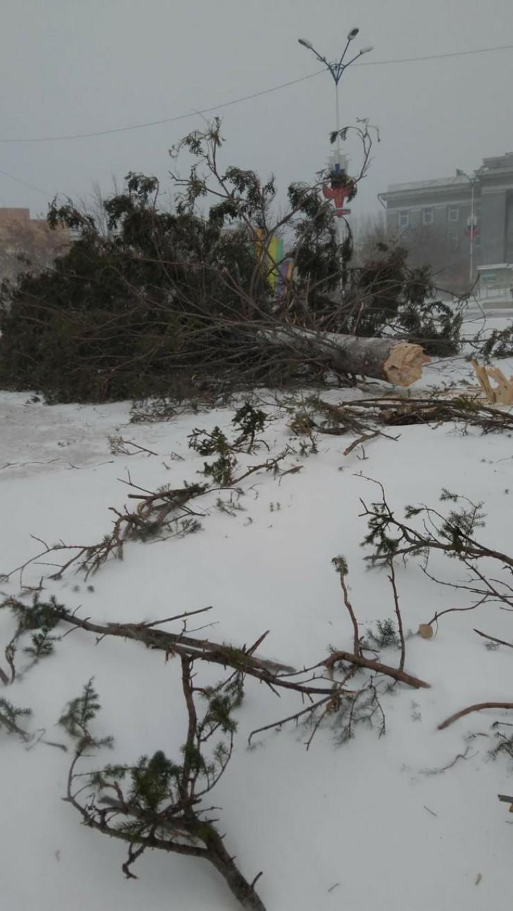 Падение елки в Черемхово, к счастью, обошлось без жертв.