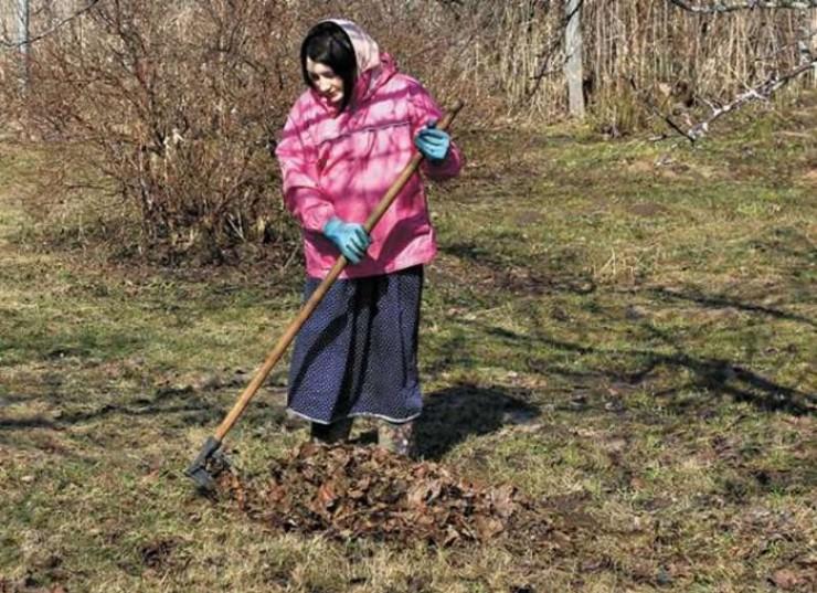 Сейчас старые листья можно собрать в черные мусорные пакеты и поставить на солнечное место. К осени получится абсолютно стерильный перегной.