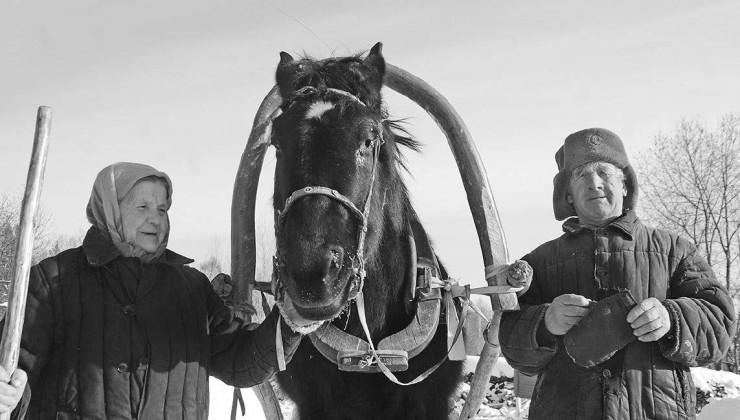Каждая семья держит скот, без этого в деревне не прожить
