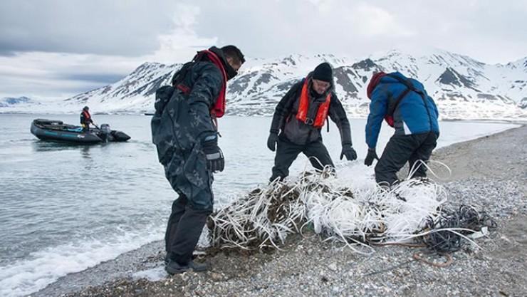 Во всех морях Северного морского пути находят не только мусор, но и частицы микропластика. Есть он и внутри рыб.