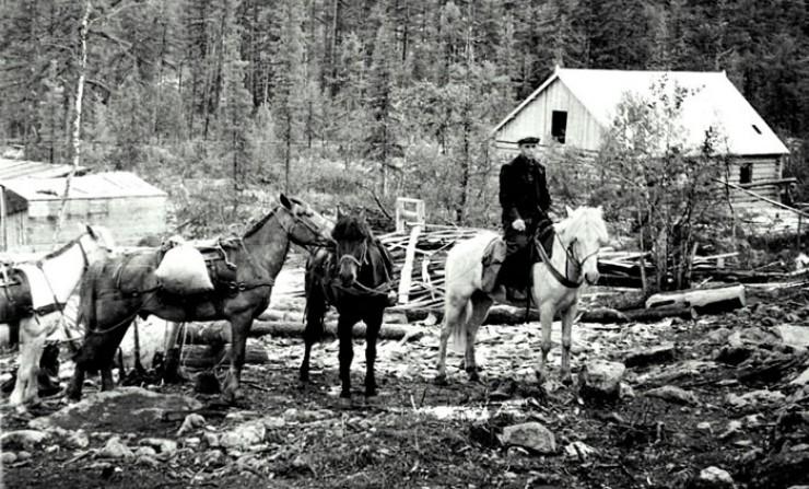 Лошадка — лучший друг геолога (участок Олонгро, фото Бориса Черникова, 1957 год).
