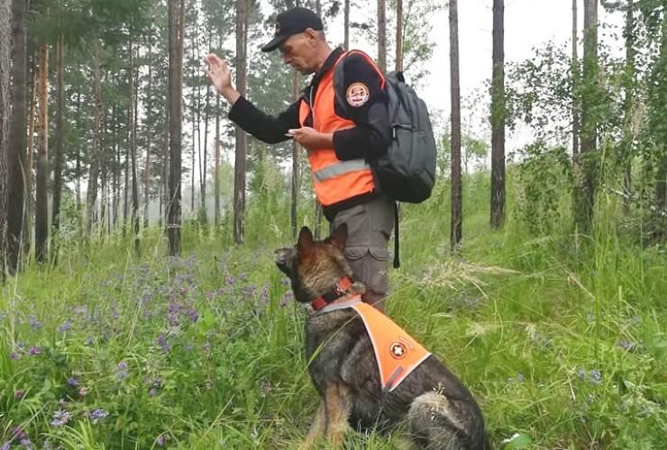 Поисковики ждут в свою команду людей с собаками. По словам кинолога Игоря Ильина, собачий век короток, но она может успеть спасти не одну человеческую жизнь.