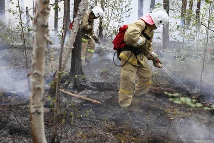 Да, ситуация с пожарами непростая, но и работа идет. Последние три года площадь пожаров снижается.