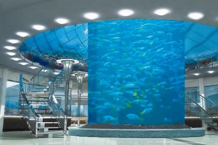 Внутри комплекса разместят большой цилиндрический аквариум диаметром пять метров и высотой десять метров, в котором будут обитать все представители байкальской подводной фауны.
