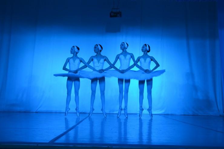 Артисты исполнили русские танцы, отрывок из балета Арама Хачатуряна «Гаянэ», «Лебединое озеро», «Иркутские зарисовки», сольные номера