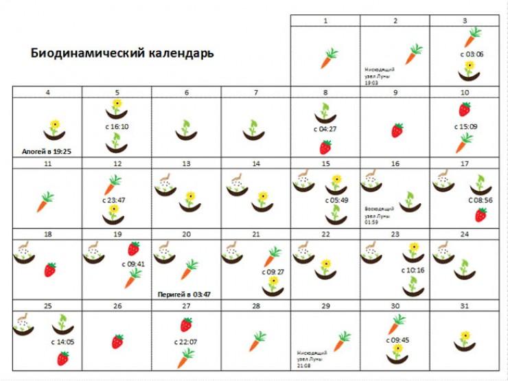 Календарь-график работ на март  2019 года. В дни, помеченные морковкой, работайте  с корнеплодами. Значок «цветы» — с цветами. Так же —   с зеленью, ягодами. Сеять семена на рассаду не стоит раньше 13-го числа.