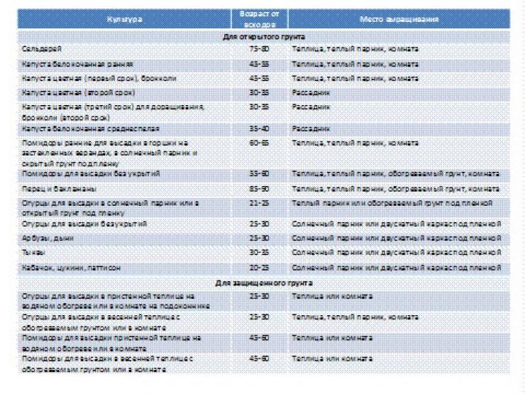 Таблица сроков выращивания рассады для разных растений