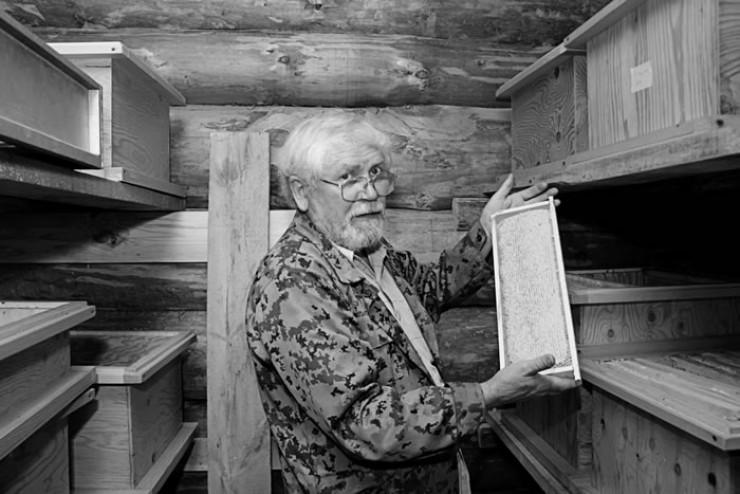 Василий Бровкин: «Я за качество своего меда спокоен, но в целом порядок в отрасли необходимо навести. Многие пасечники работают сами по себе. Заболели у них пчелы, а они не сообщают. Контроль нужен».