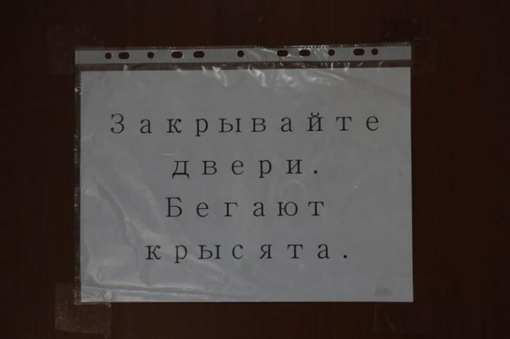 Объявление на двери маточной