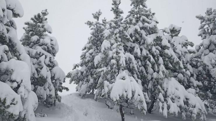 Утром в понедельник, 14 сентября, на Хамар-Дабане метеорологи измерили высоту покрова — оказалось, выпало 52 сантиметра! Сейчас тот активный циклон уже ушел из региона дальше — в Монголию и Забайкалье. Угроза бабьему лету снята. На фото — в выходные возле Метеостанции по дороге на пик Черского.