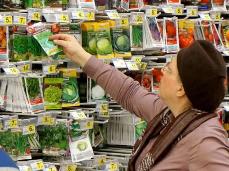 Специалисты советуют покупать семена в специализированных магазинах. Попросите продавца показать документацию о сортовых и посевных качествах семян.