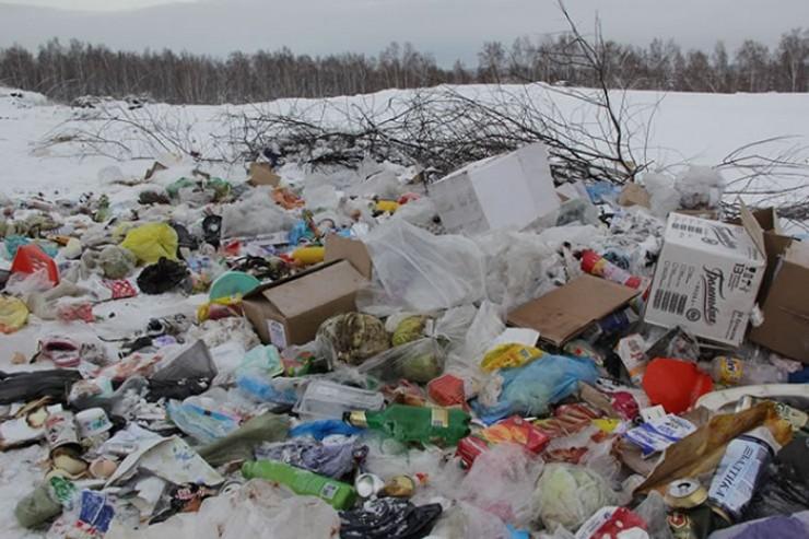 Планируется, что благодаря мусорной реформе в регионе будут ликвидированы все стихийные свалки