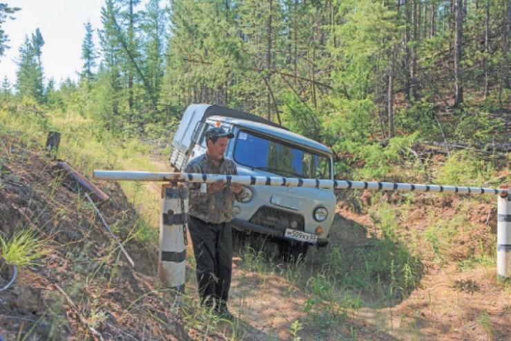 Дороги на участки закрыты шлагбаумом, но есть особые участки,  так называемые зоны покоя, куда не заходят даже охотоведы: в тихих распадках копытные приносят потомство