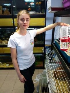 Анна, продавец зоомагазина: «Думаю, ближе к Новому году интерес со стороны покупателей к крысам возрастет. Средняя стоимость грызуна колеблется в районе 200 рублей».