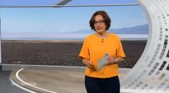 Ведущая передачи Weltspiegel  на телеканале Das Erste