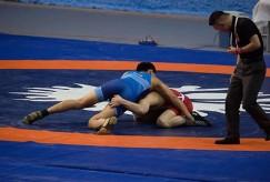 В больших состязаниях у борцов вырабатываются опыт, навыки и характер
