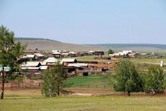 Несколько деревень Баяндаевского района уже отбиваются от хищников. Волки не боятся наведываться в гости, их манит перспектива «легкой наживы».