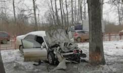 Очевидно, что эта «Корона» во вторник в Шелехове ехала на большой скорости, хотя на той улице действует ограничение до 40 км/ч. Удар в дерево был такой сил, что сам водитель и его 45-летний пассажир погибли на месте.